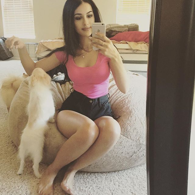 Re Youtube Sssniperwolf Lia