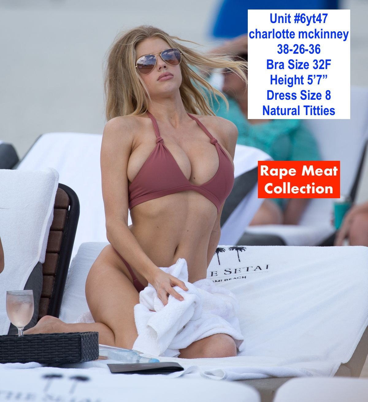 _charlotte-mckinney-in-bikini-at-a-beach-in-miami-02-19-2017_21 2.jpg